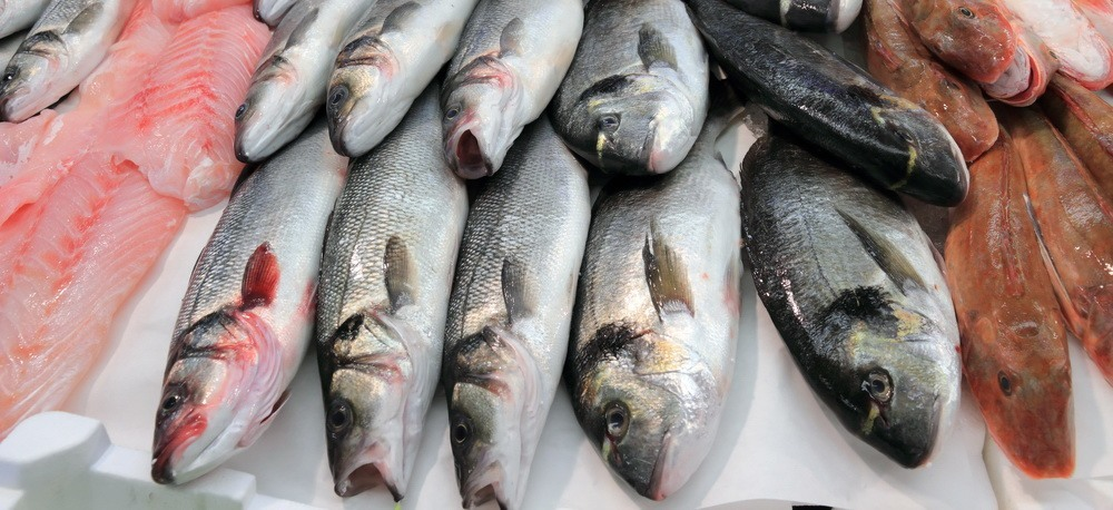 Is fish safe to eat after fukushima for What fish is safe to eat