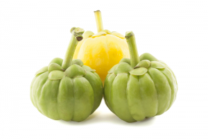 this is how garcinia cambogia looks like