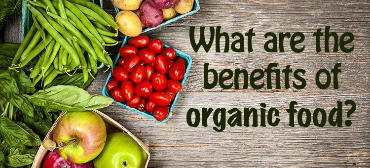 the importance of organic food in Eating organic food will not only provide you with more nutritional bang for your buck, but will ensure that you are getting food in it's most natural state, without the addition of added hormones, antibiotics, pesticide and genetically modified organisms our meals are completely organic.