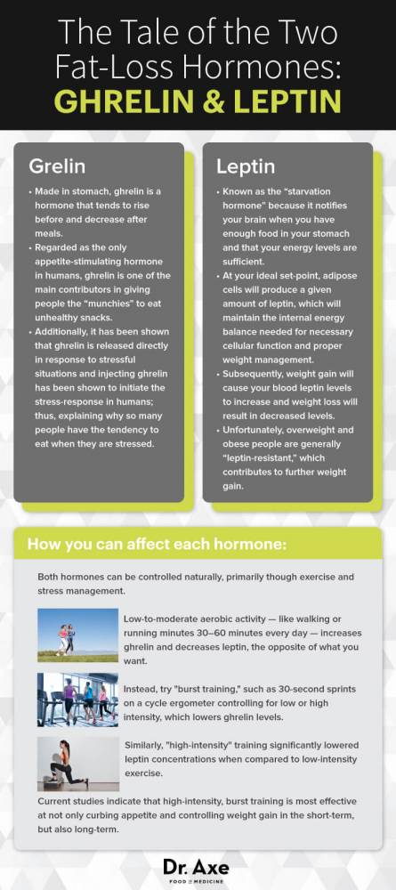 Hormones and Weight Loss – 10 Tips to Biohack Grhelin and ...