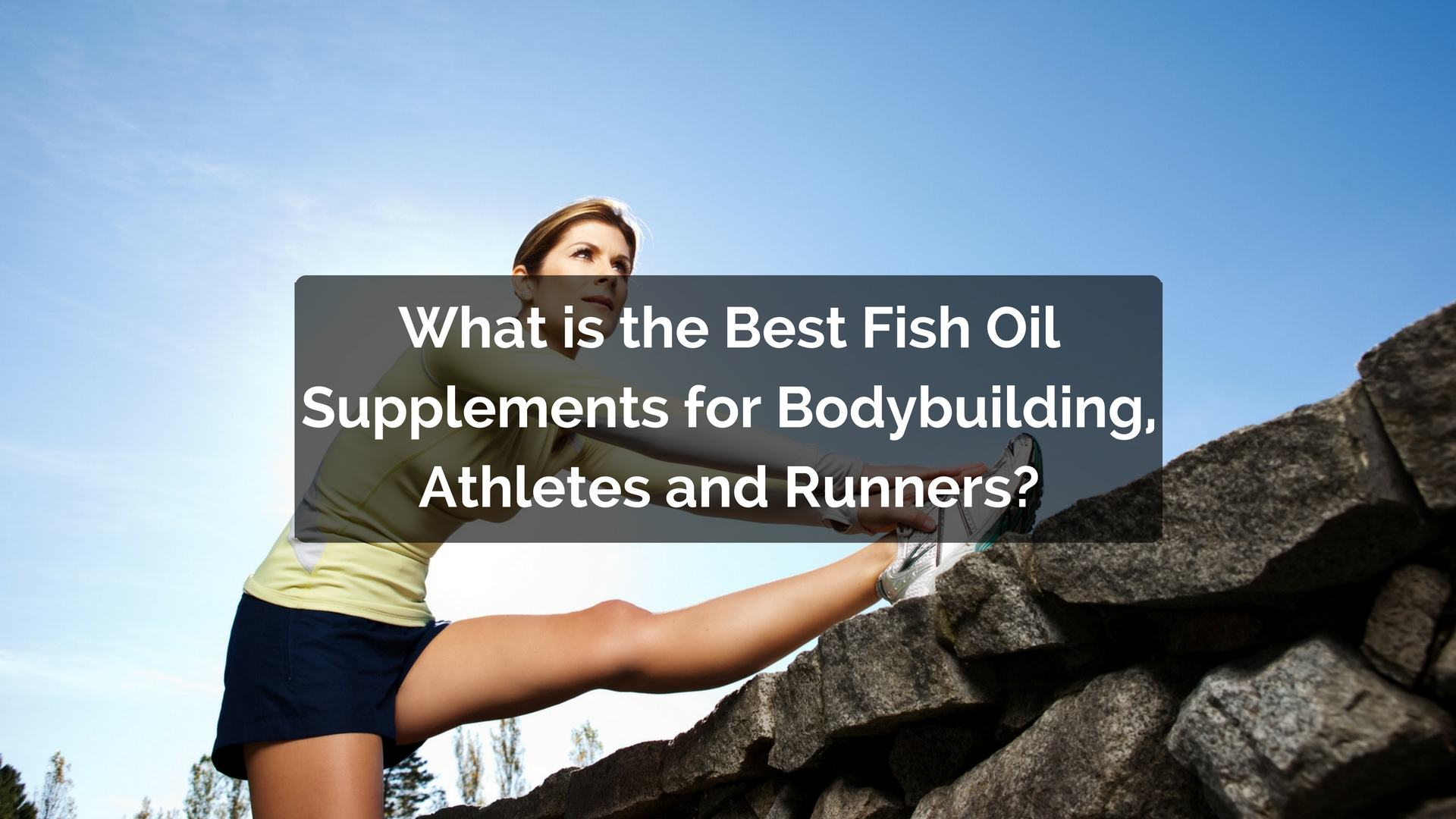 What fish oil is the best