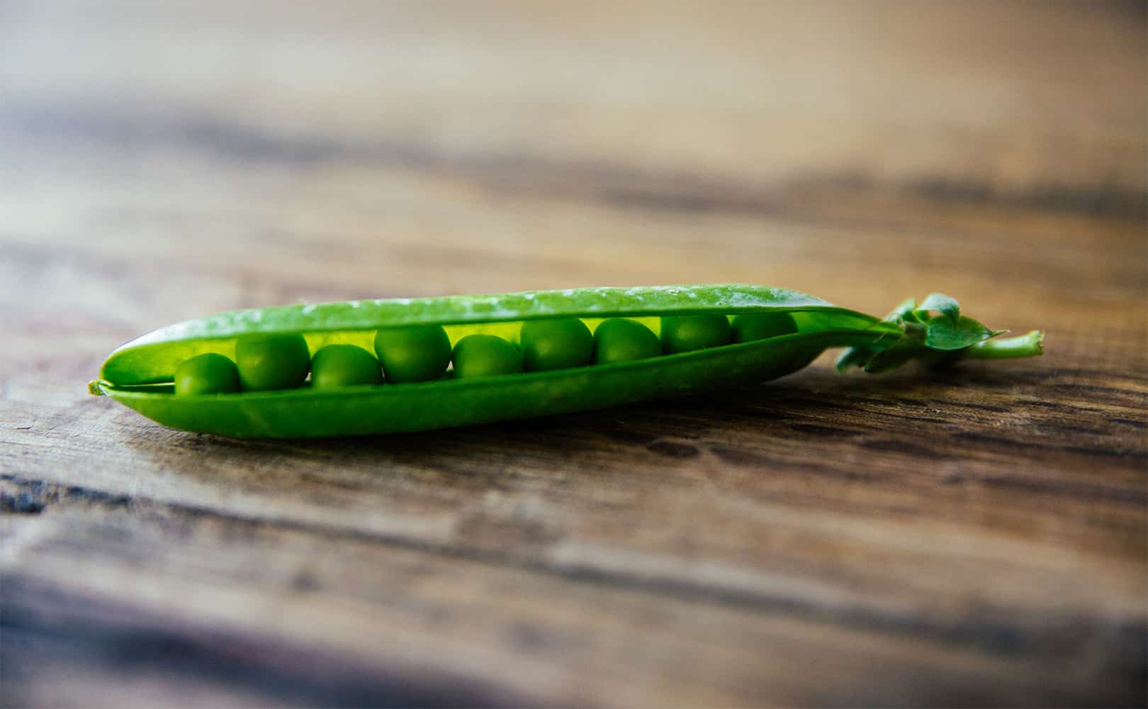 Close up of a half-open pea pod with peas in it on a wooden table.