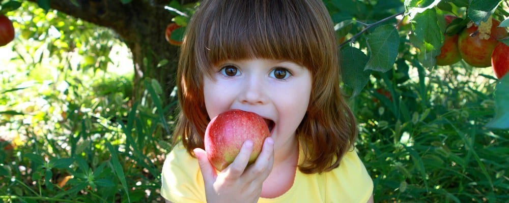A young girl joyfully biting into an apple.