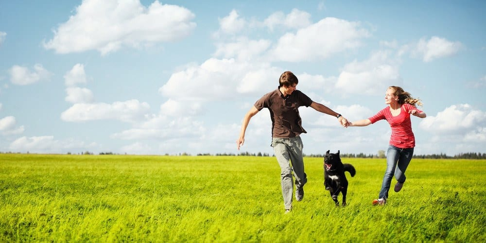 A man and a woman running in a green field with a dog.