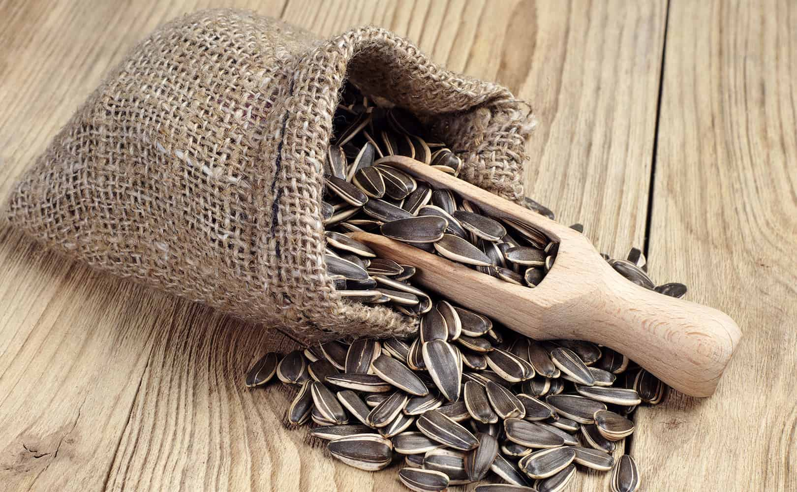 Sunflower seeds spilling out of a bad with a wooden spoon on a wooden table.