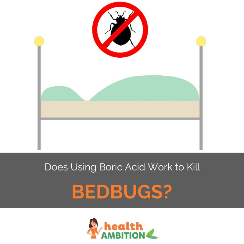 "A graphic of a bedbug with the title ""Does Using Boric Acid Work to Kill Bedbugs?"""