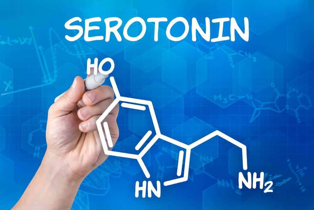 Structural formula for serotonin.