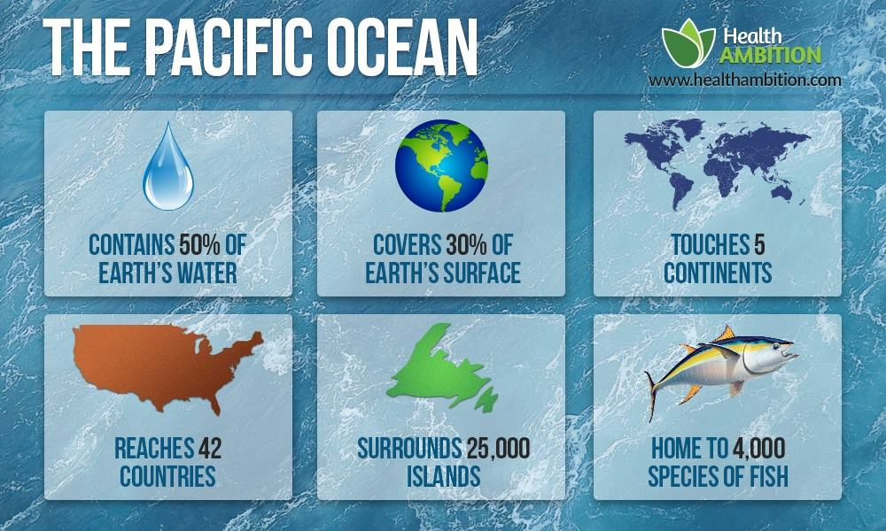 An infograph showing relevant data about the Pacific Ocean (how many islands it reaches, how big it is, etc)