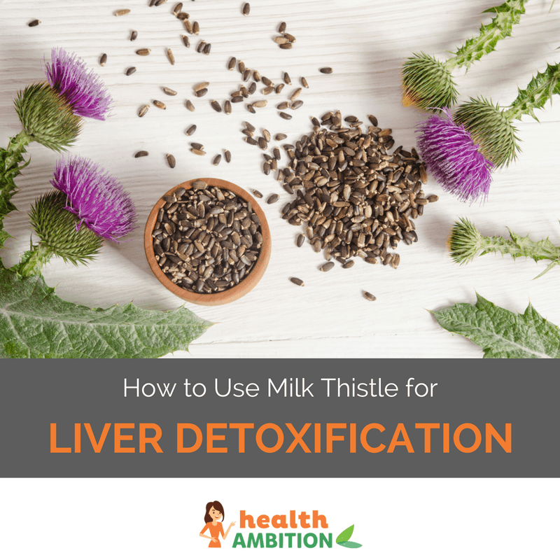 "Milk thistle and it's seeds in a bowl with the title ""How to Use Milk Thistle for Liver Detoxification."""