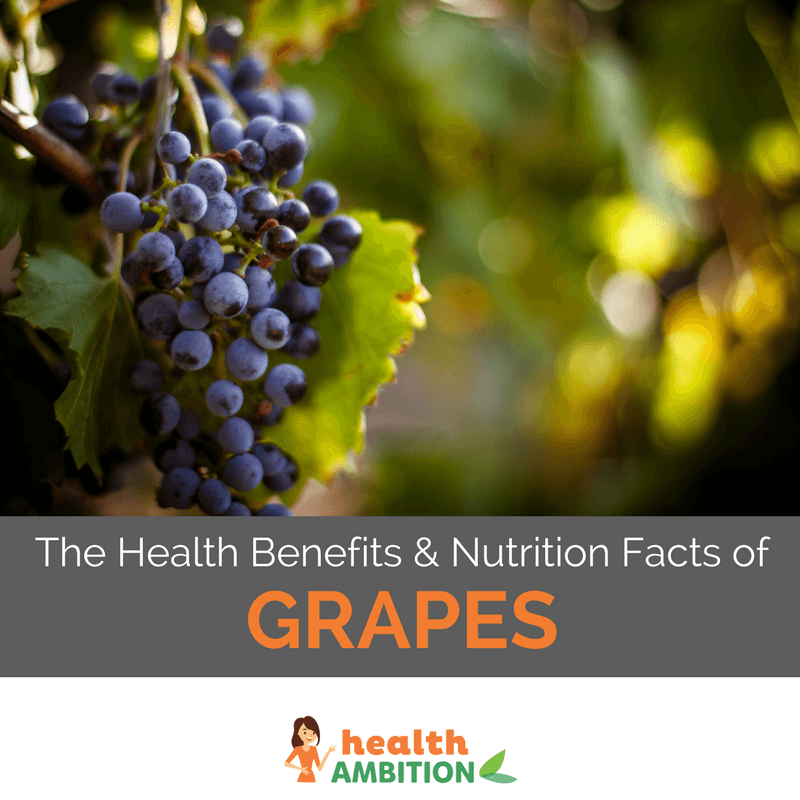"Grapes on a grape vine with the title ""The Health Benefits & Nutrition Facts of Grapes."""