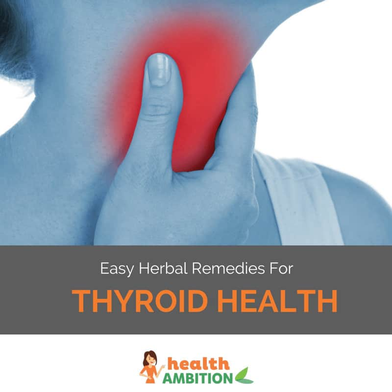 "A person touching her thyroid with the title ""Easy Herbal Remedies For Thyroid Health"""
