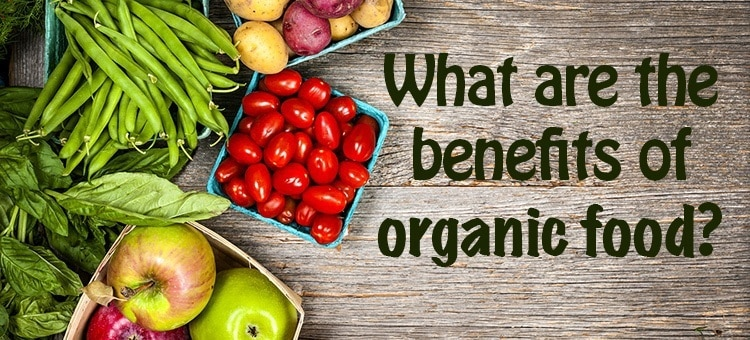 "Fruits and vegetables with the title ""What are the benefits of organic food?"""