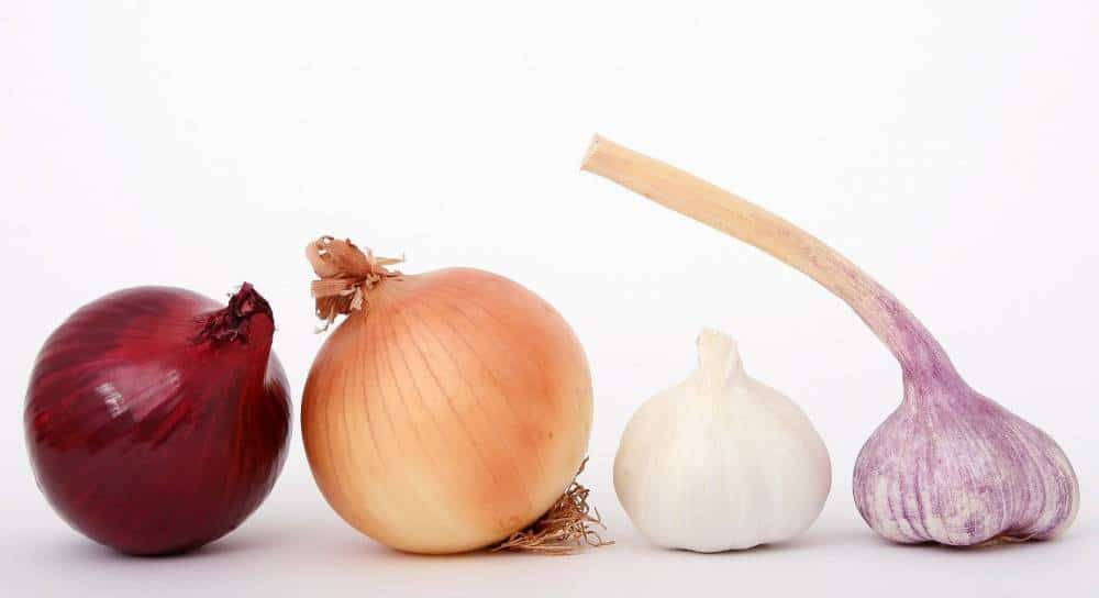 Various types of onions.