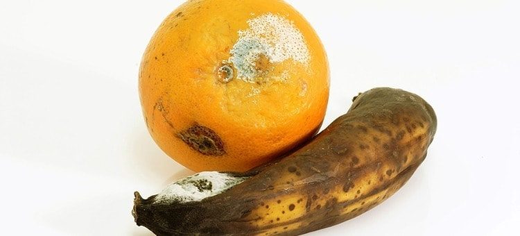 A rotten orange and banana.