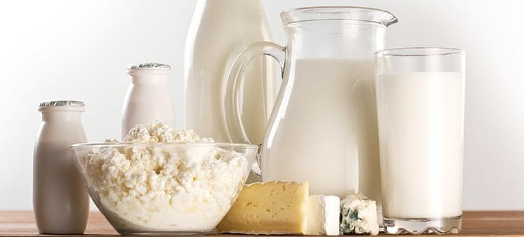 Dairy products like cheese and milk.
