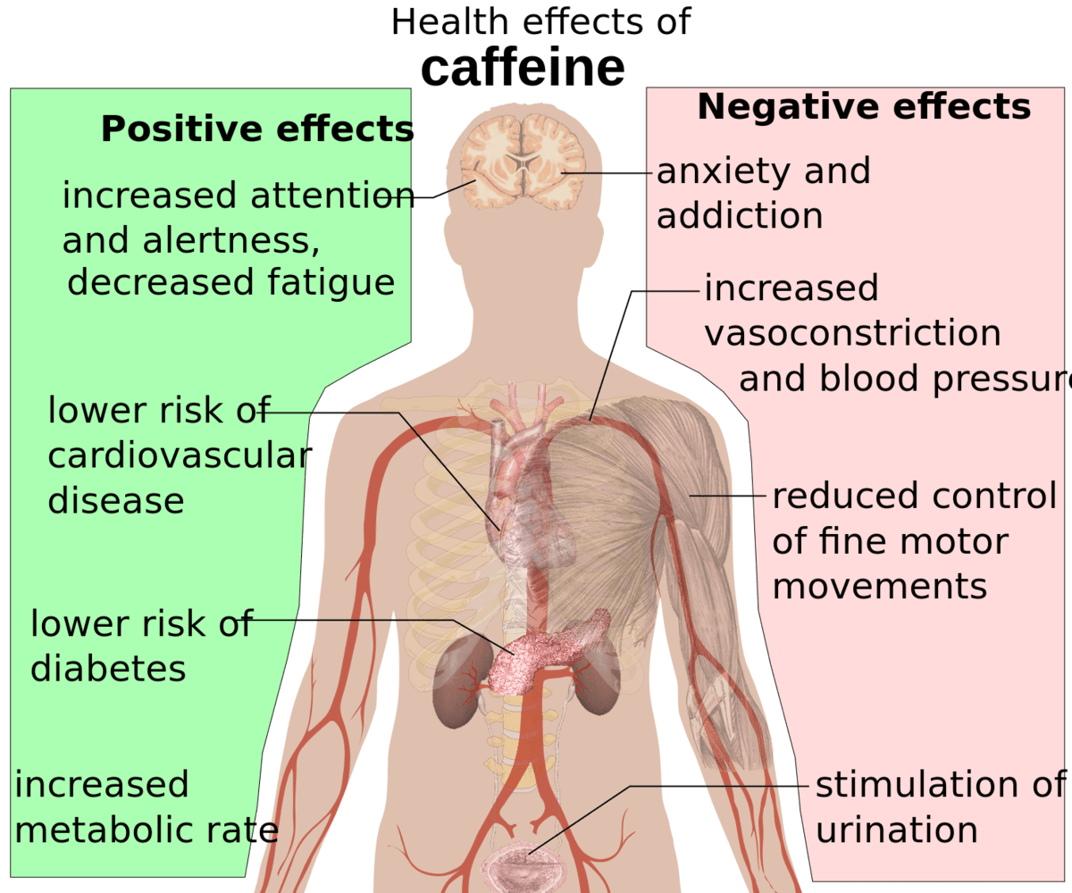 A graphic showing the health effects of caffeine.