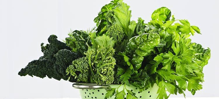 A leafy green representing spinach or kale.