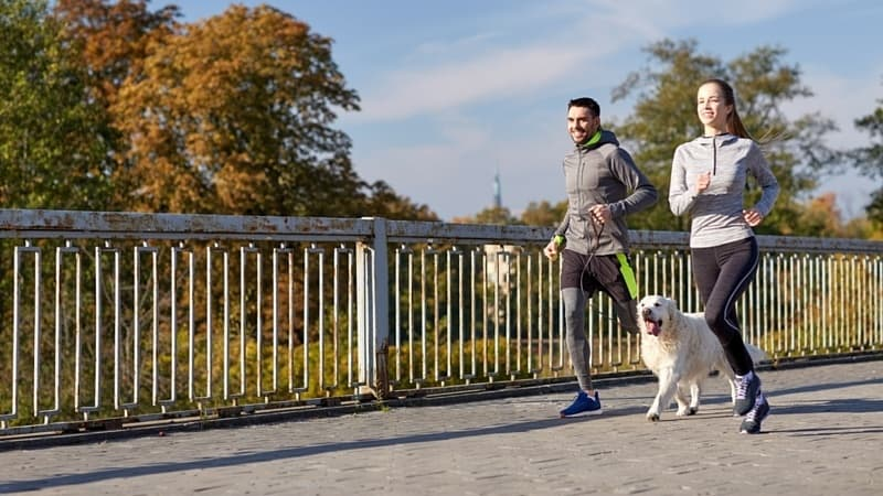 A couple jogging with a dog.