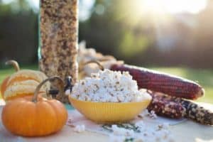 A small bowl of popcorn next to a tree with pumpkins and corn cob.