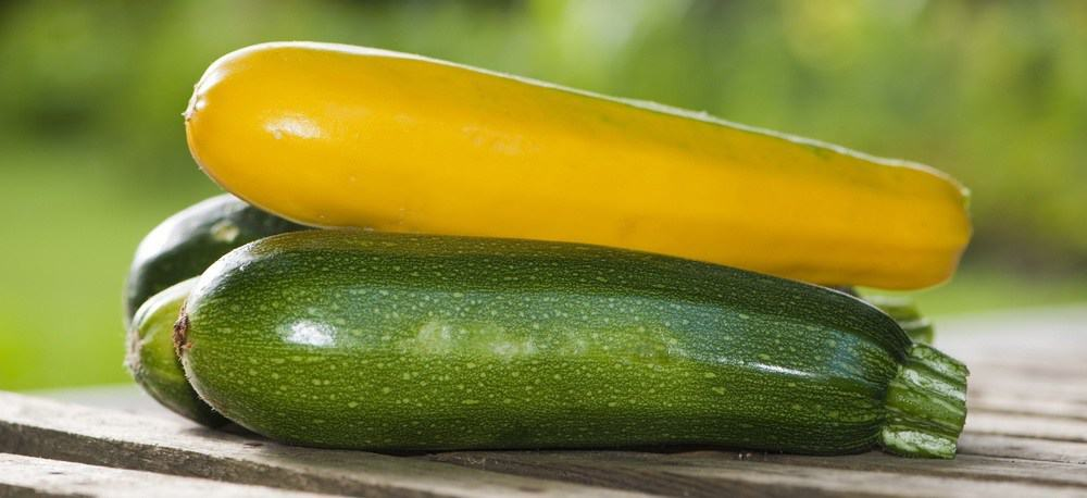 Zucchinis piled on each other.