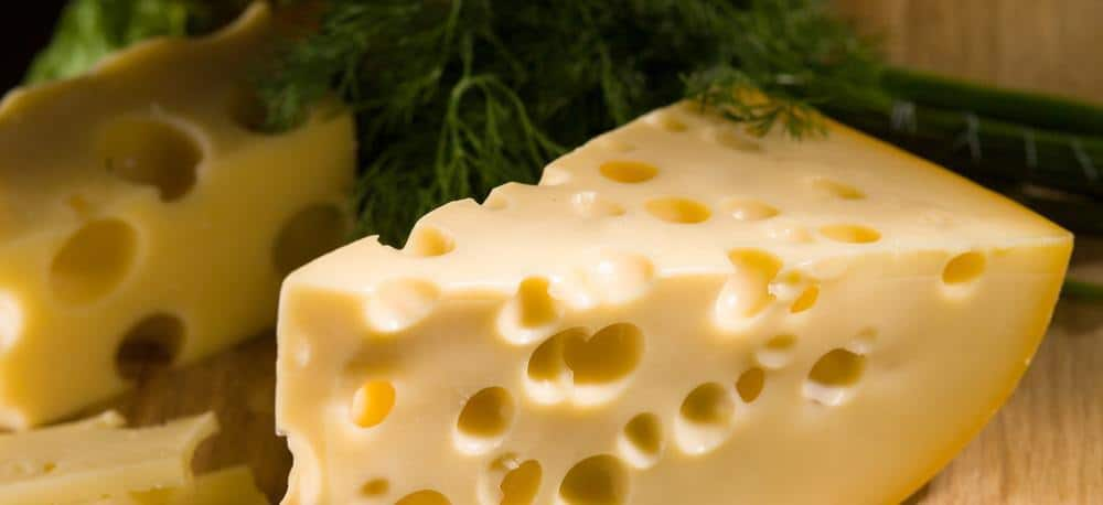 Close-up of a slice of emmental (swiss) cheese.