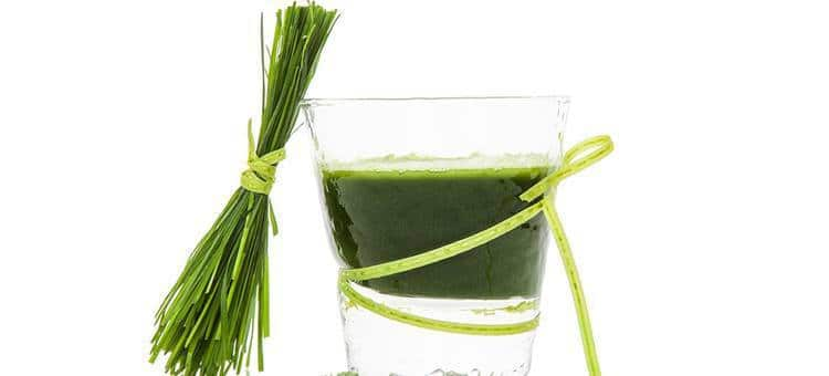 A glass of wheat grass juice with some wheat grass