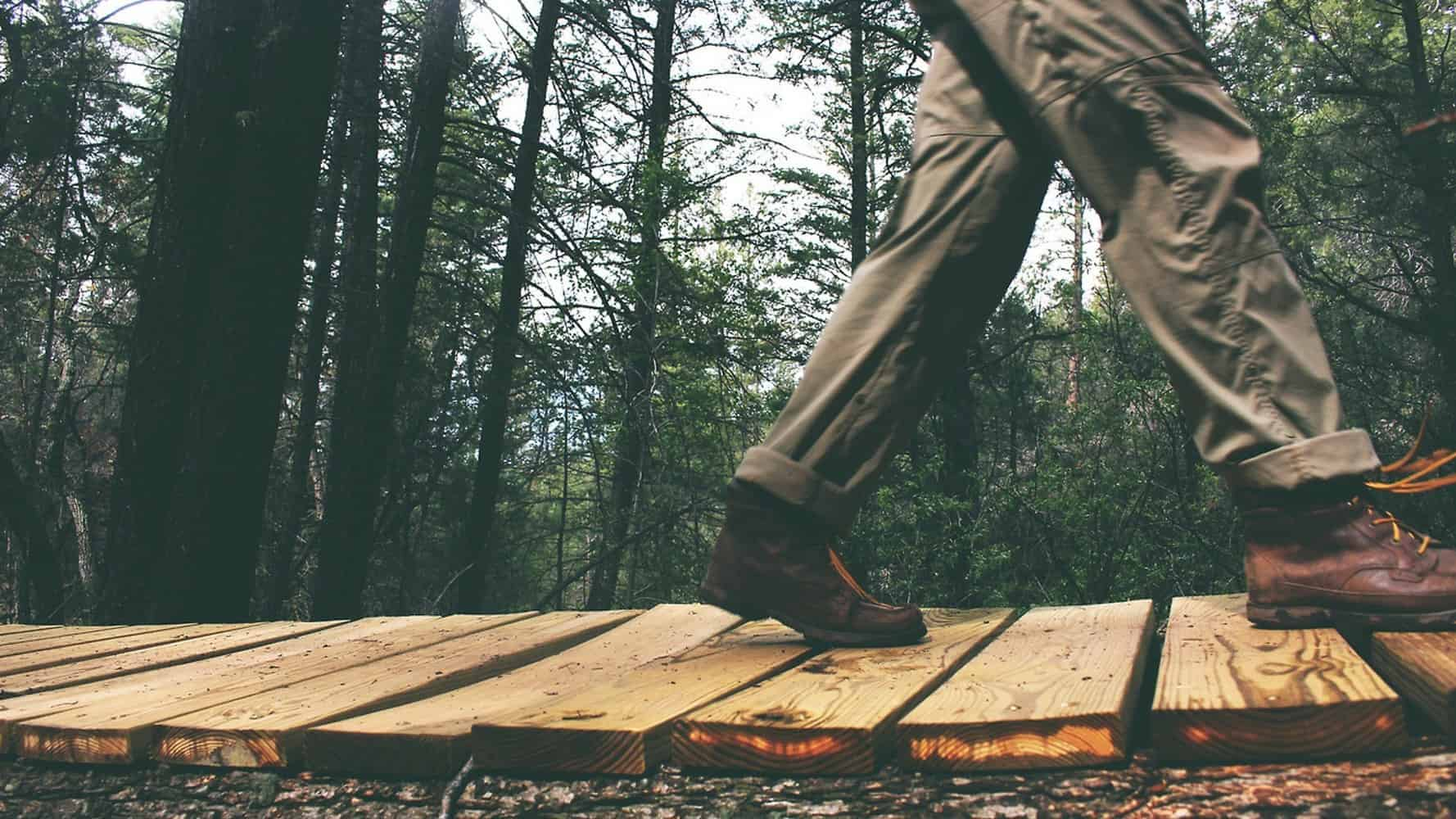 A person walking on wood in a forest.