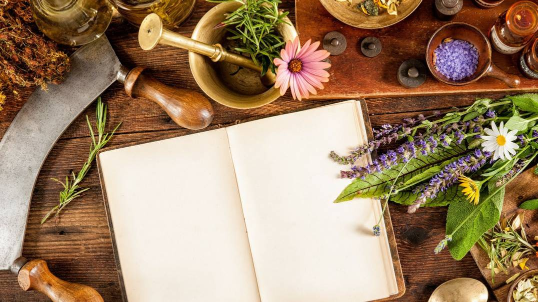 Herbs surrounding a notebook.