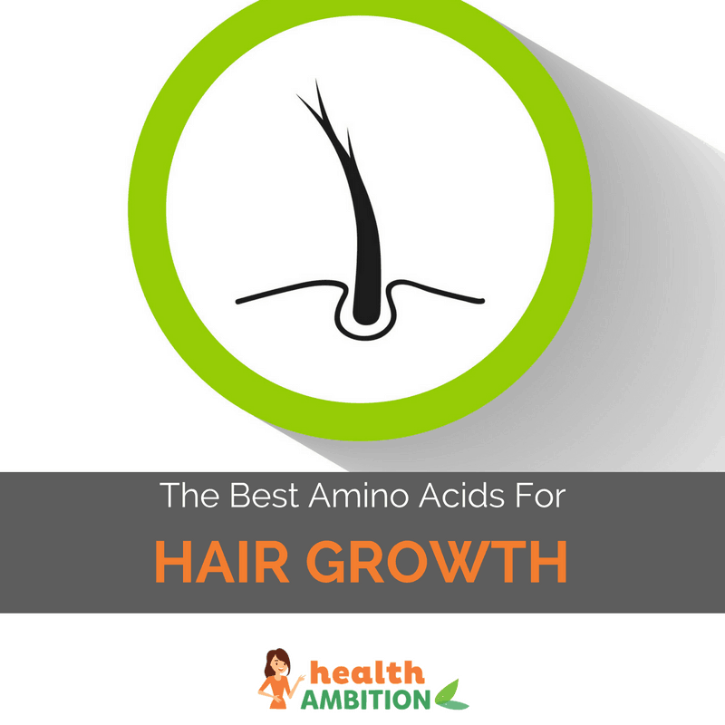 "Graphic of a hair follicle with the title ""Best Amino Acids For Hair Growth"""