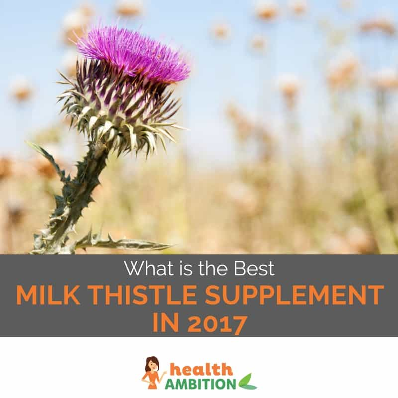 What is the best milk thistle supplement
