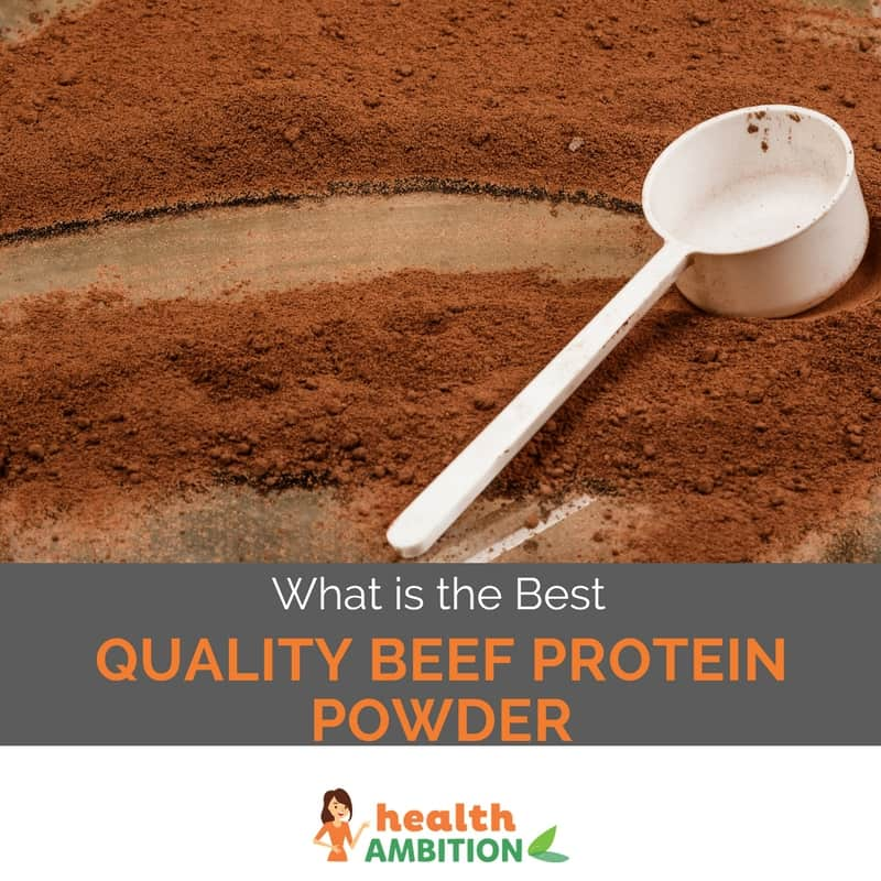 "Beef protein powder with the title ""What is the Best Quality Beef Protein Powder"""