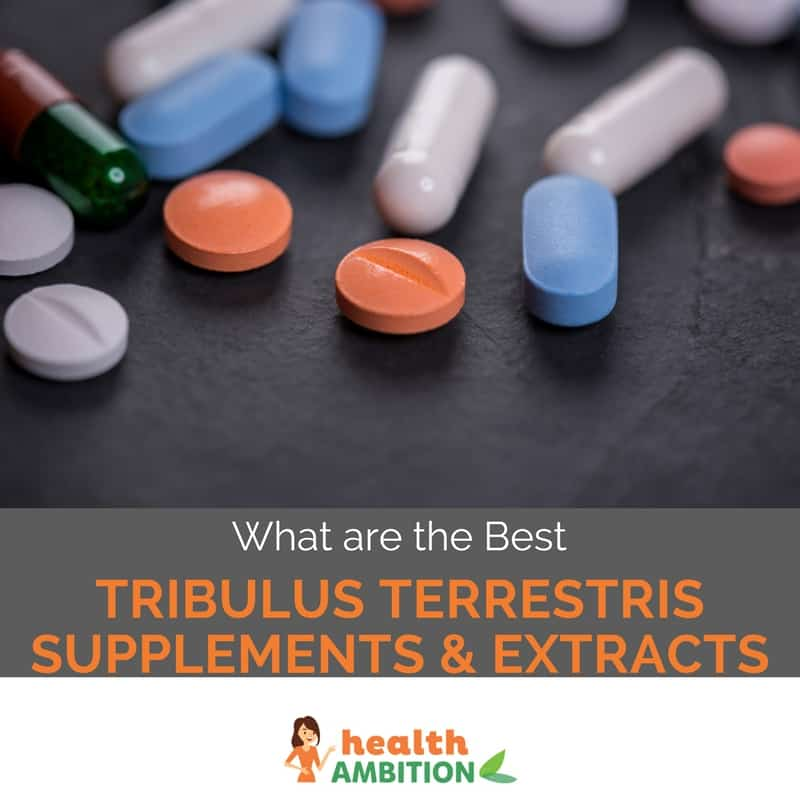 "Tablets and capsules with the title ""What are the Best Tribulus Terrestris Supplements & Extracts"""