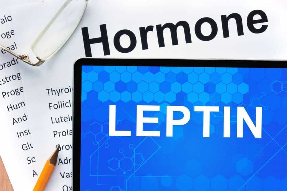 The word 'Hormone Leptin'