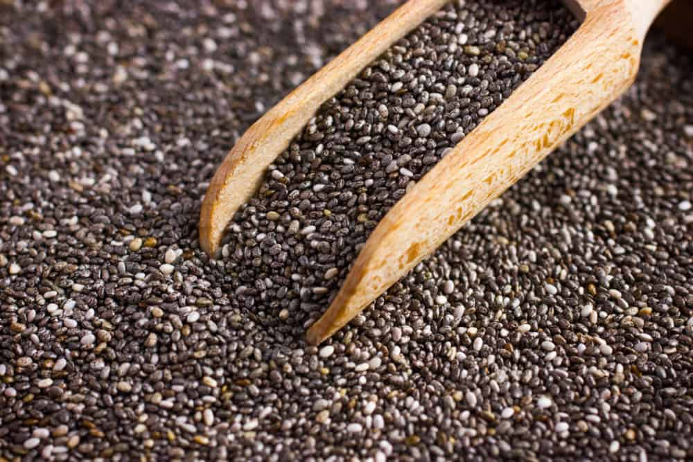 Organic chia seeds in scoop, selective focus