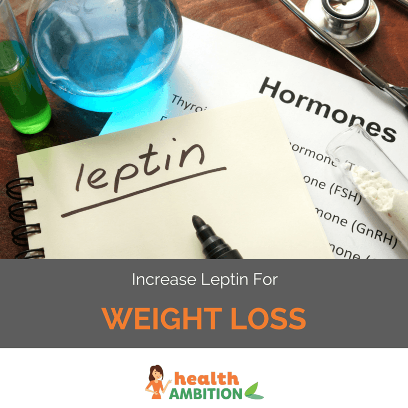 "The words 'Leptin' and 'Hormones' on a paper and notebook with the title ""Increase Leptin for Weight Loss"""