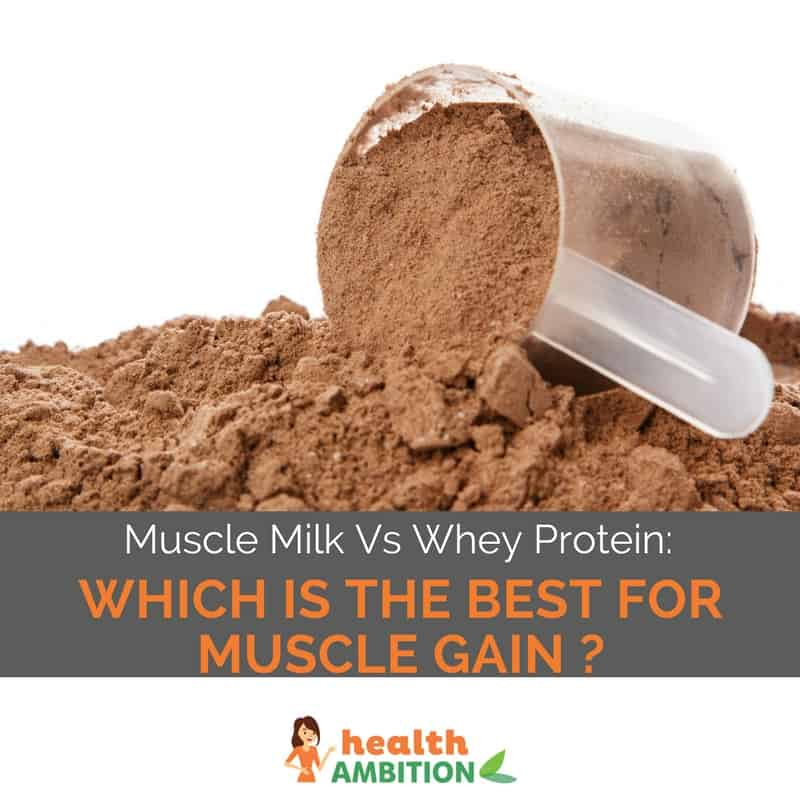 "Proetin powder with the title ""Muscle Milk Vs Whey Protein: Which is The Best For Muscle Gain?"""