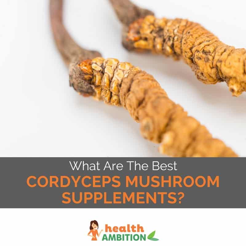 "Cordyceps mushrooms with the title ""What Are The Best Cordyceps Mushroom Supplements?"""