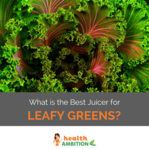 "Leafy green with the title ""What is the Best Juicer for Leafy Greens?"""