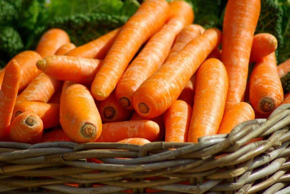 A basket of carrots.