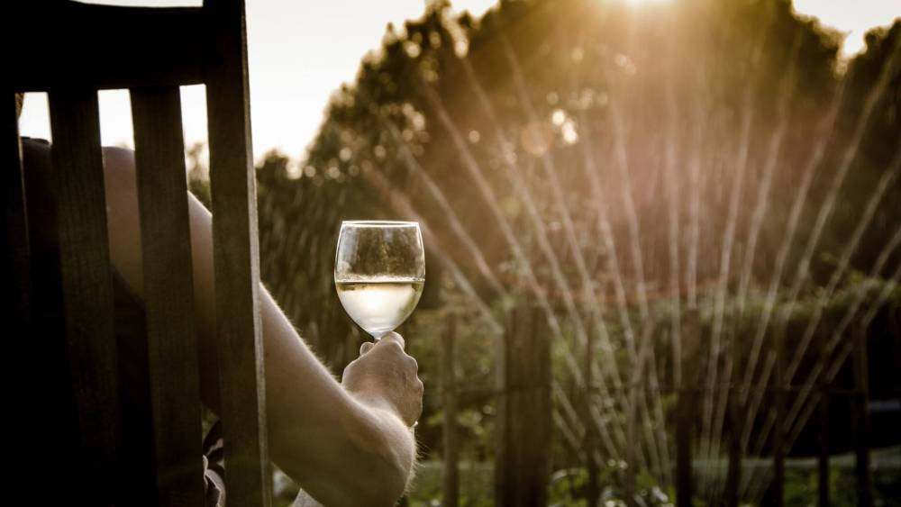 A person sitting in a a garden, holding a glass of wine