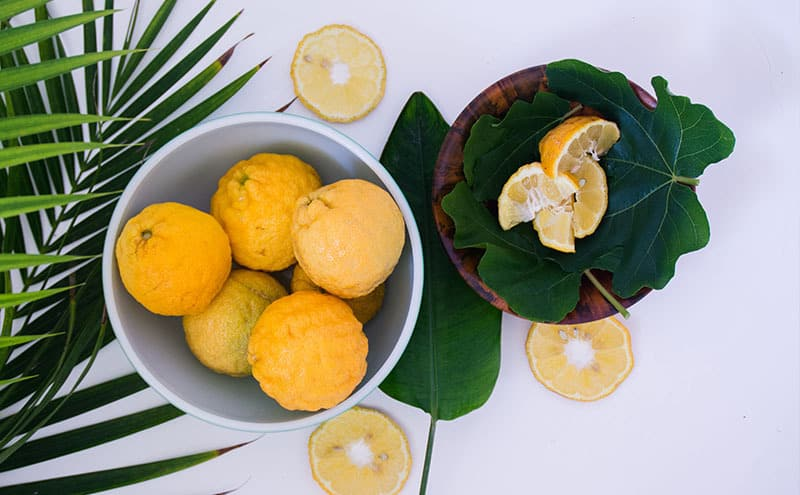 A white ceramic bowl of six lemons next to a smaller wooden bowl with four quarter lemon slices on deep green leaves.