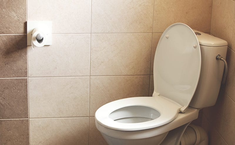 Best raised toilet seats for mobility-impaired adults removed from a toilet with a lifted lid and a toilet paper roll on the wall.